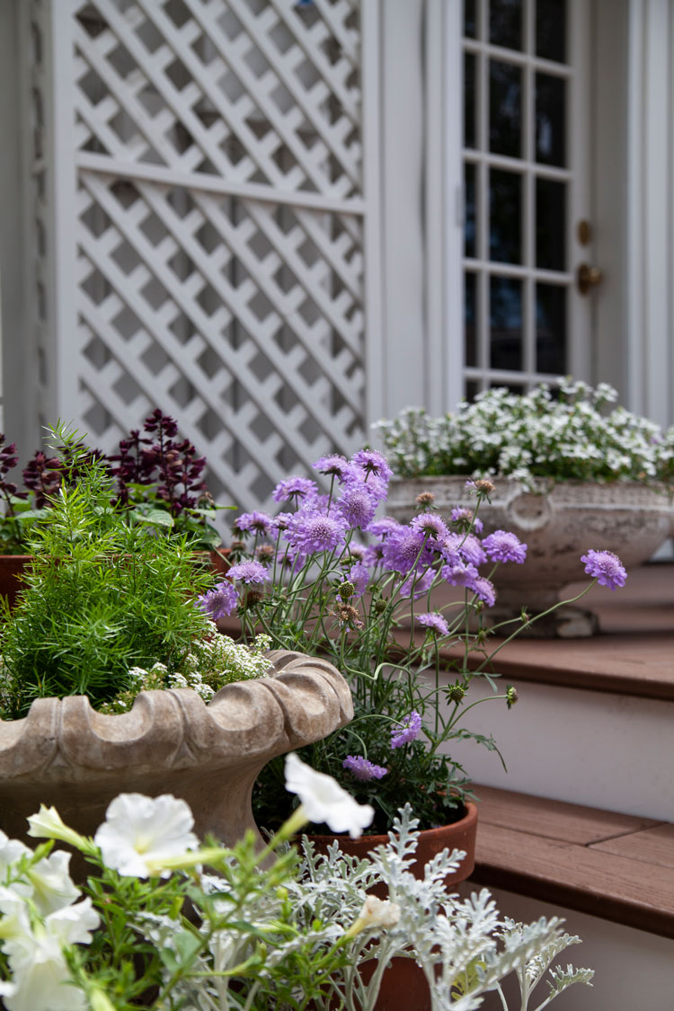 I\u0027ve mentioned before that my favorite color to use outside in flowers is purple. There\u0027s something about it that feels calming and beautiful against greens ... & Purple Flower Pots - The Makerista
